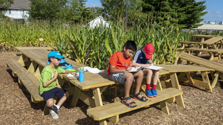 Children from Central Middle School working at a picnic table in our Corn / Meal installation