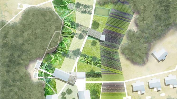 Rendering of Lupani African Conservation School, Site and masterplan